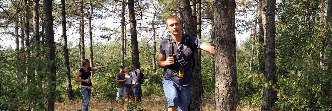 Fünf Geocacher durchqueren den Wald