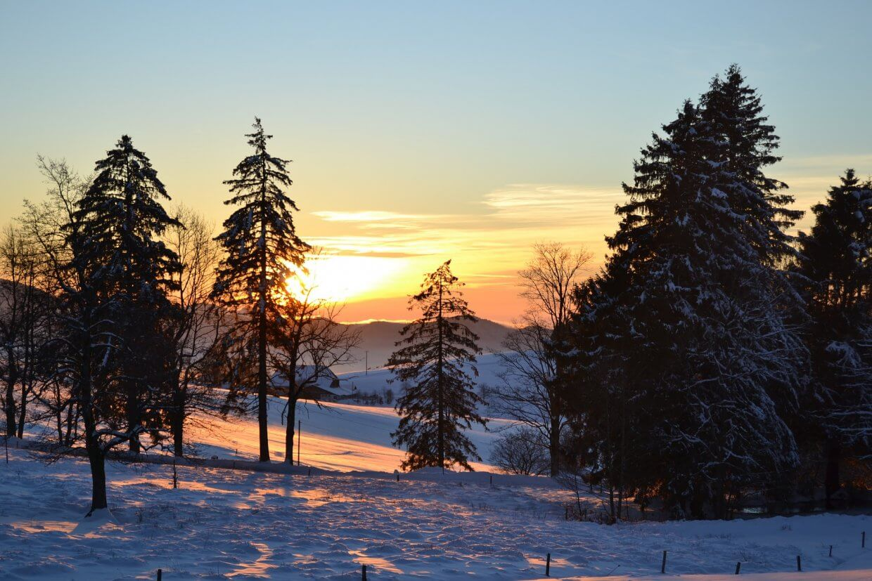 Winterlandschaft beim Schneeschuhwandern