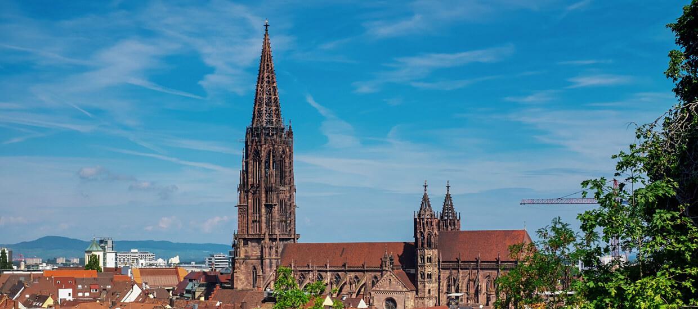 Teambuilding Freiburg